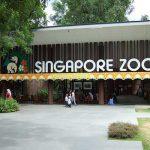 du_hoc_singapore2